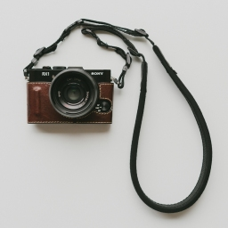 The First Resource For Your Move To Mirrorless