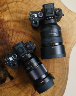 The Sony a9: Expectation vs. Reality